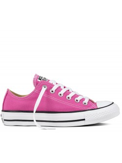 Converse Chuck Taylor all star toile basse magenta