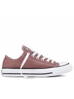 Converse Chuck Taylor all star basse saddle