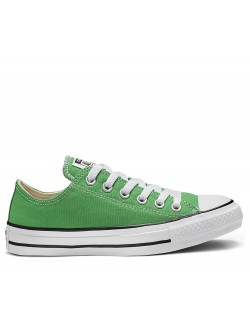 Converse Chuck Taylor all star toile basse bold / kiwi